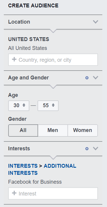 Facebook audience insight demographic info