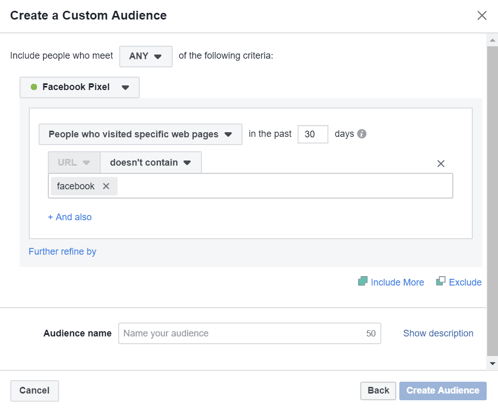 custom audience url doesn't contain example